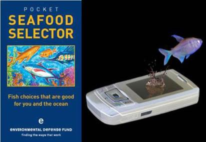 Seafselector